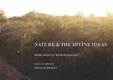 Nature and the Divine Ideas