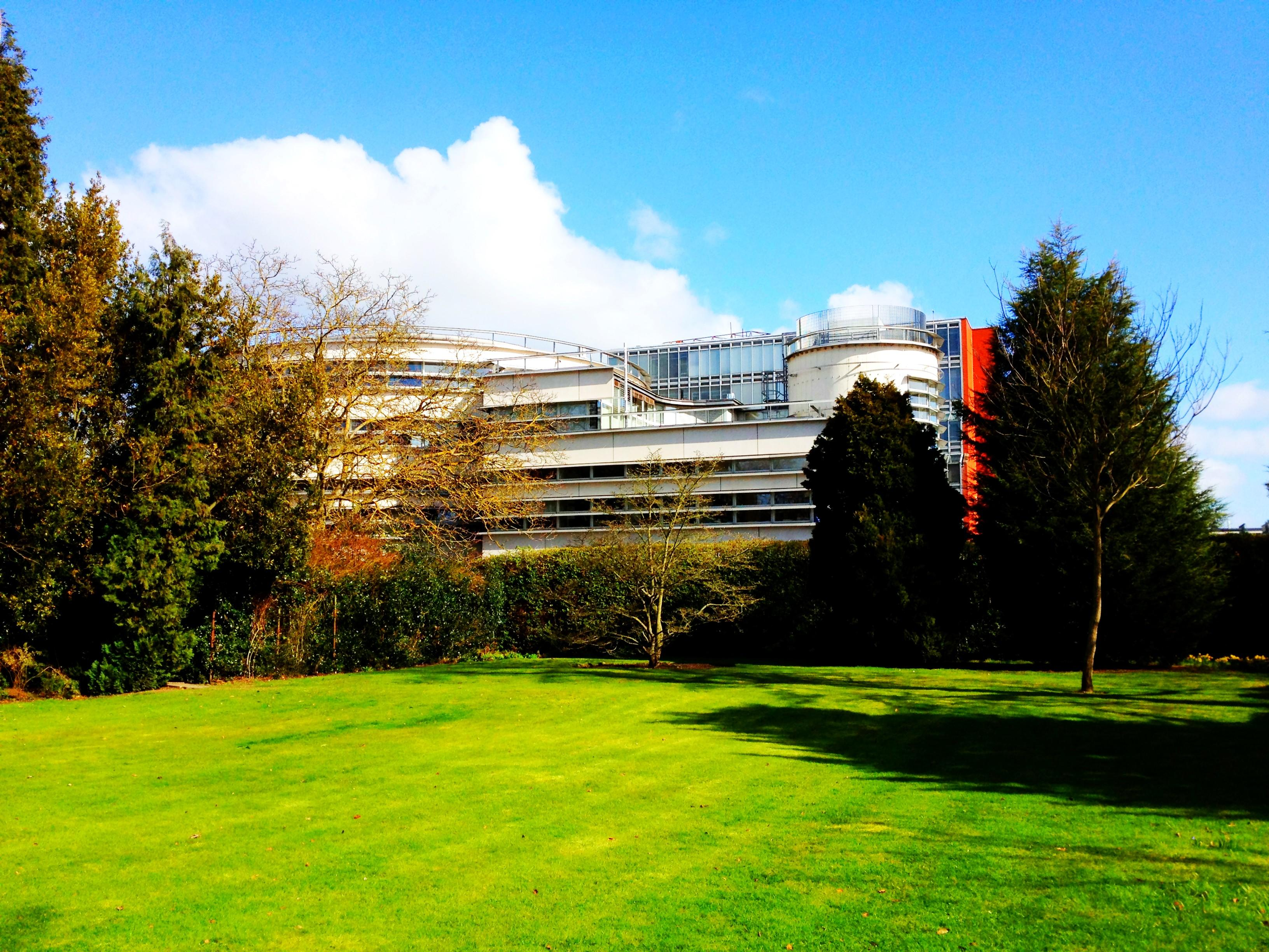 Faculty of Divinity © University of Cambridge All rights reserved